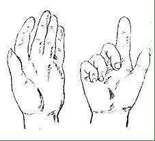 bàn tay vuốt trụ